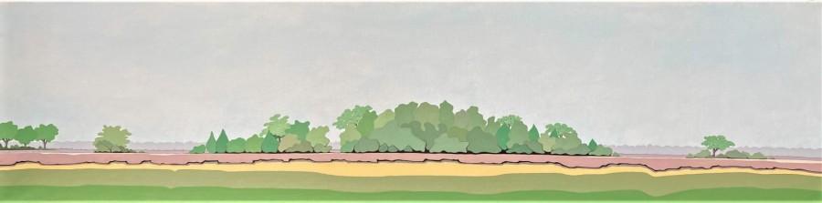 Nederlands landschap schilderij: Dwingelderveld 13