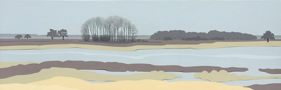 Nederlands landschap schilderij: Dwingelderveld (8)