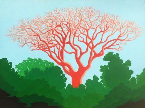 Bonaire schilderij: Oude zadelboom