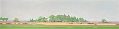 Nederlands landschap schilderij: Dwingelderveld 14