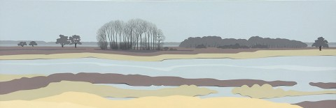 Nederland schilderij: Dwingelderveld #8