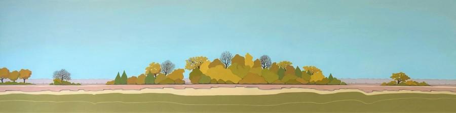 Nederlands landschap schilderij: Dwingelderveld 14 b